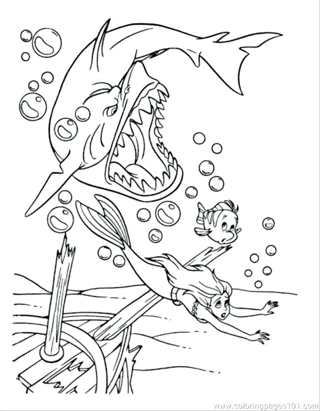 650x834 Bull Shark Coloring Pages Bull Shark Coloring Pages Coloring Page