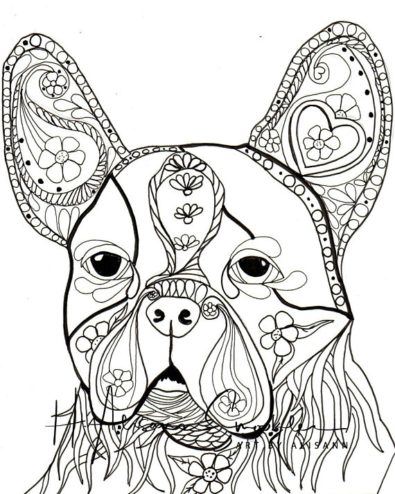 570x712 Boston Bull Terrier Digital Download Coloring Books