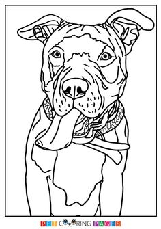 236x335 Free Printable American Pit Bull Terrier Coloring Page Available