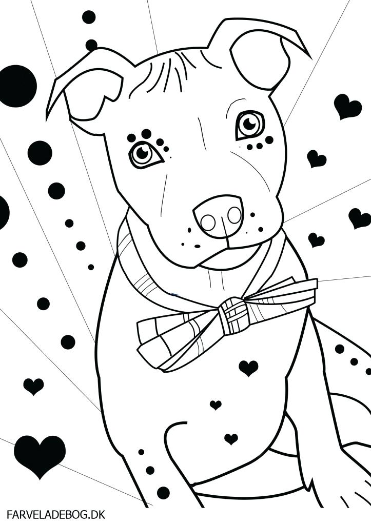 723x1024 Pitbull Coloring Pages Pit Bull Terrier Coloring Page Pitbull