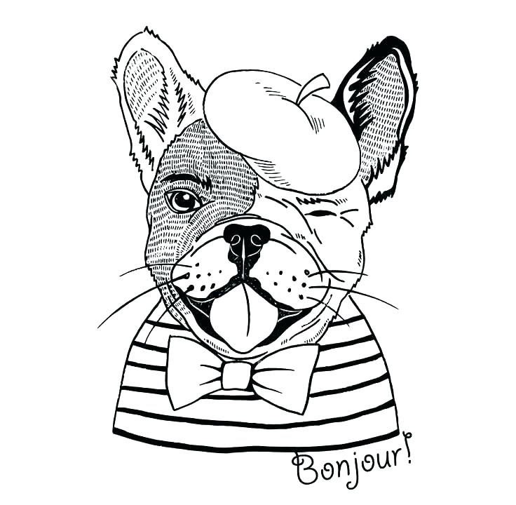 736x720 Bulldog Coloring Pages Free Dog Coloring Pages Free French Bulldog