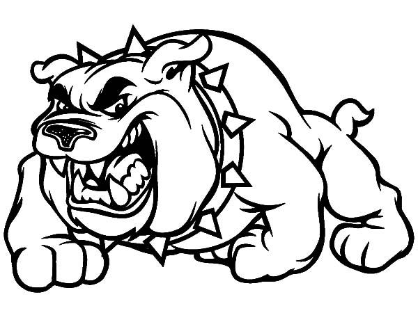 600x450 Bulldog Coloring Pages Printable