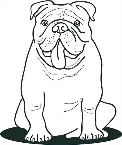 420x500 Bulldog Coloring Pages Printable Georgia Bulldogs Coloring Sheets