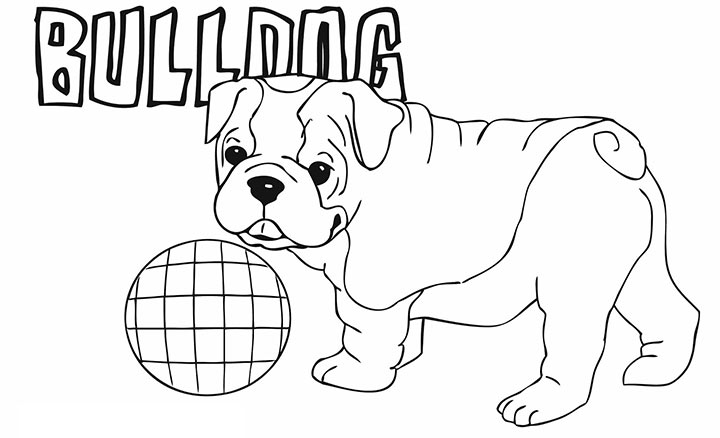 720x438 Bulldog Pictures To Color French Bulldog Clipart Coloring Page