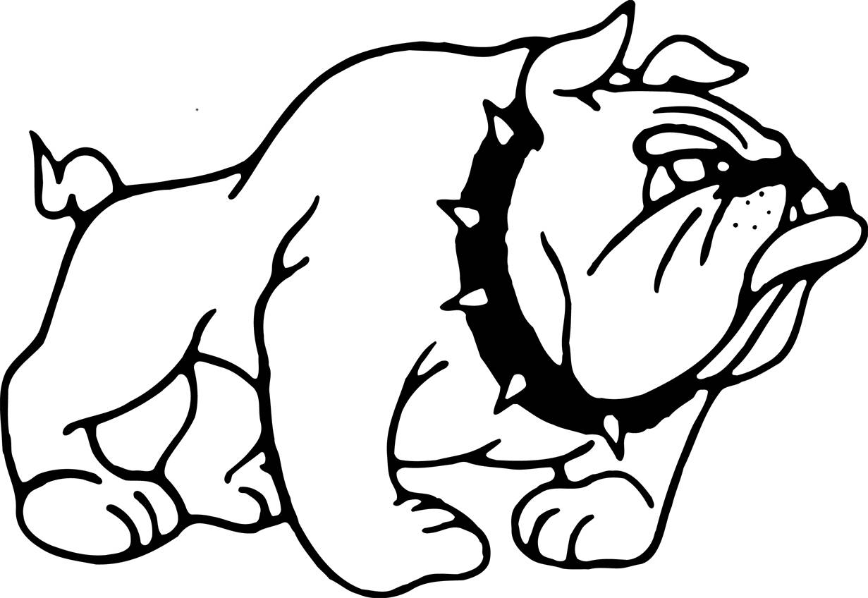 1231x848 Great Bulldog Coloring Pages With Additional Free Colouring