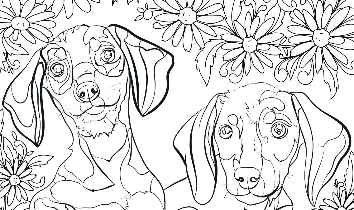 1136x674 Bulldog Coloring Pages Coloring Sheets Dogs Coloring Pages Prairie