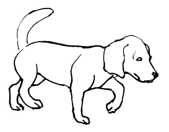 579x451 Bulldog Coloring Pages S S Bulldog Coloring Pages Printable