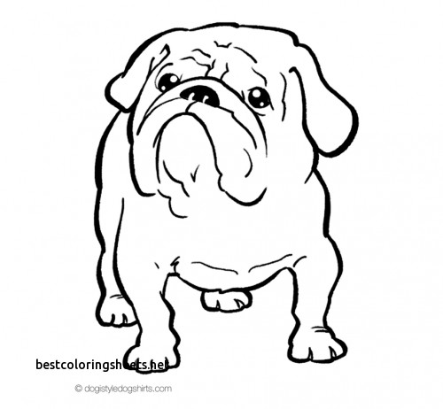 500x462 Inspirational Bulldogs Coloring Pages To Print Best Coloring Pages