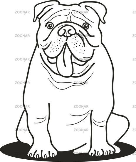 463x550 Bulldog Coloring Pages Bulldog For Coloring Book Embroidery