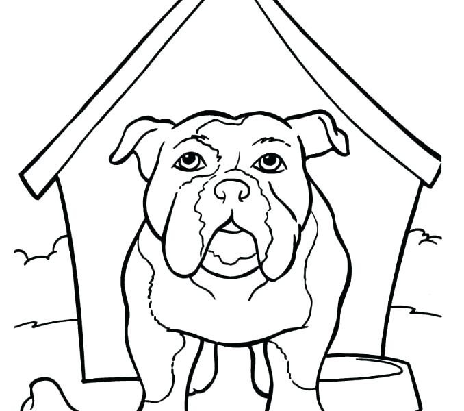 678x600 Bulldog Coloring Page French Bulldog Coloring Pages Picture French