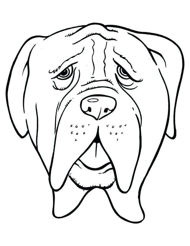 640x828 Bulldog Coloring Page Head Bulldog With Old Age Coloring Page