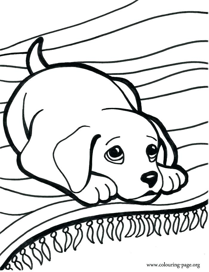 700x912 Free Dog Coloring Pages Doggy Coloring Pages Best Puppy Coloring