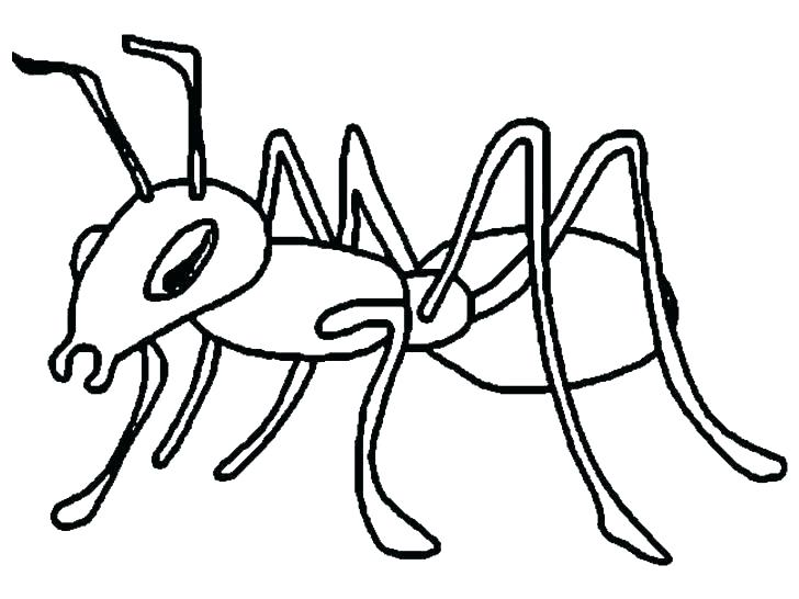 728x546 Ant Coloring Page Bullet Ant Coloring Page Ant Hill Colouring