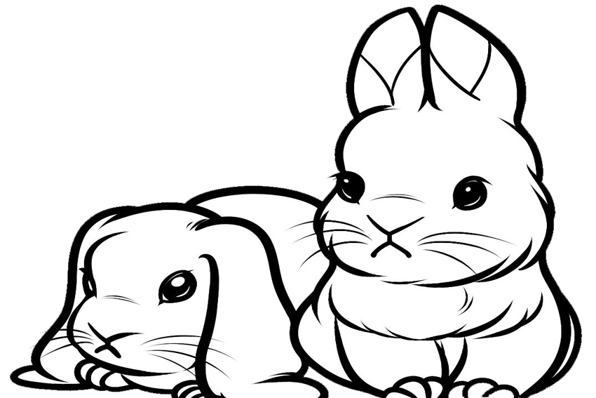 850x567 Cute Bunny Coloring Pages To Download And Print For Free