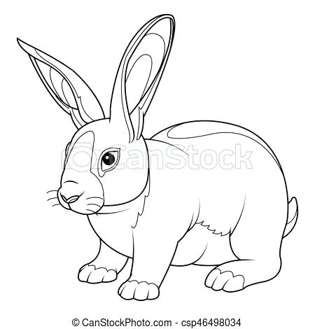 450x470 Rabbit Coloring Page Rabbit Coloring Page Bunny Coloring Pages