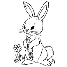 graphic about Printable Bunny Coloring Pages named Bunny Coloring Web pages Printable at  Totally free for