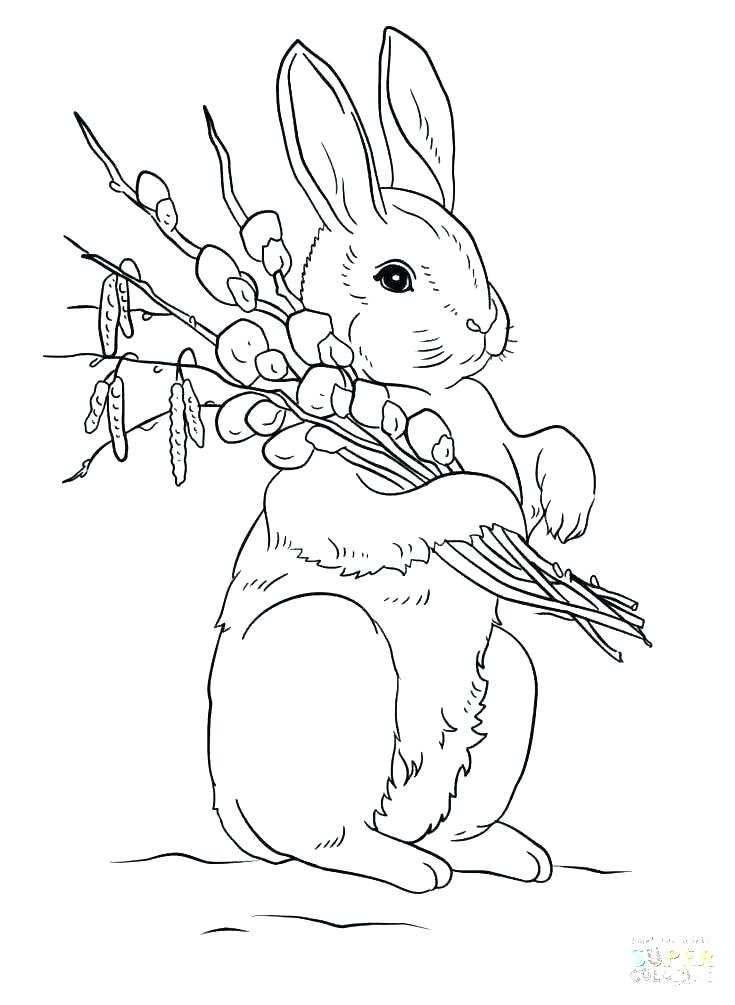 735x1005 Coloring Page Bunny Ear Coloring Page Ear Coloring Page Coloring