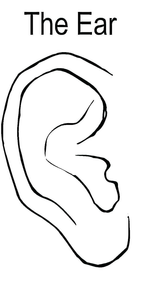 600x1285 Ear Coloring Sheets Coloring Pages Of Ears Ear Coloring Page Ear
