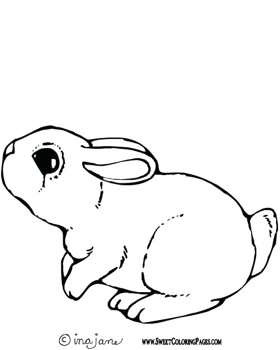576x720 Bunny Coloring Pages Coloring Page Bunny Ears Coloring Page Ears