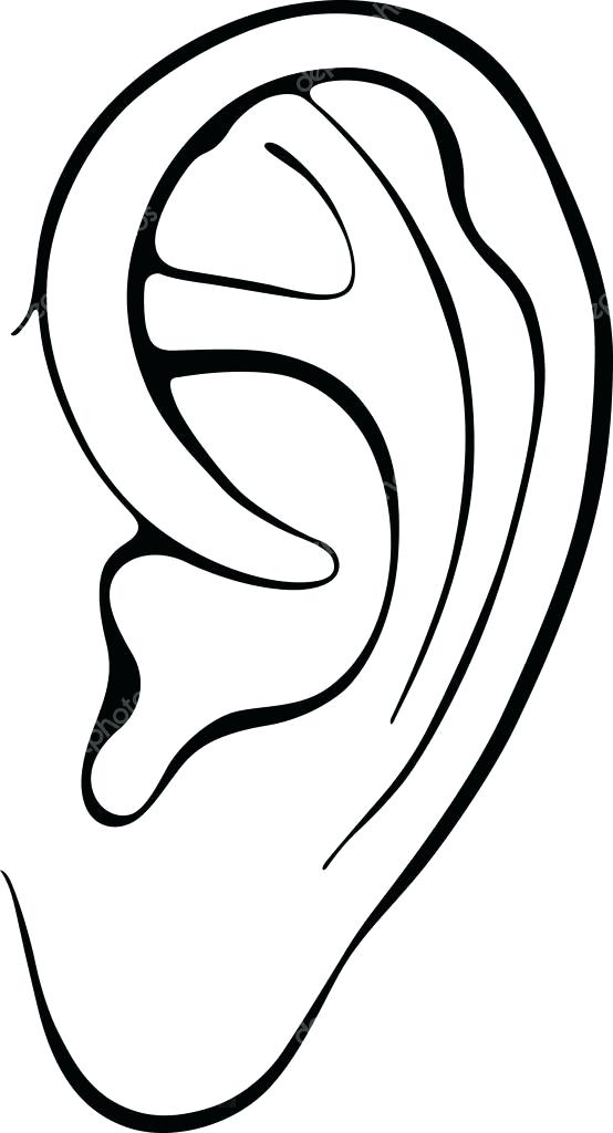 554x1024 New Ear Coloring Page For Ear Coloring Pages Bunny Ear Coloring