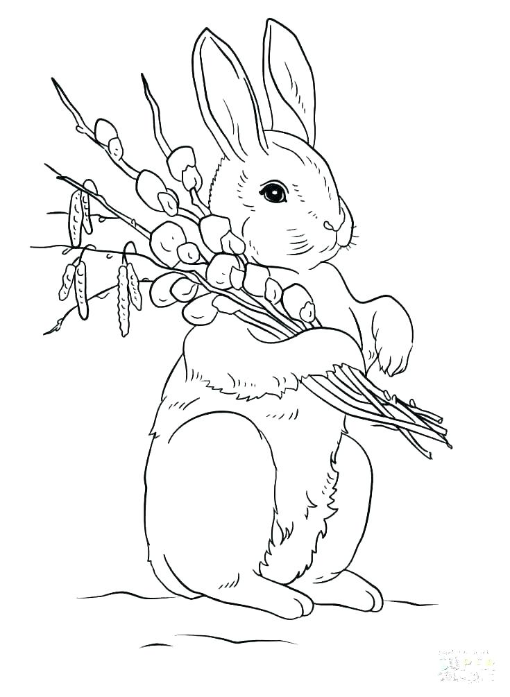 735x1005 Bunny Ear Coloring Pages Bunny Head With Ears Coloring Page Google