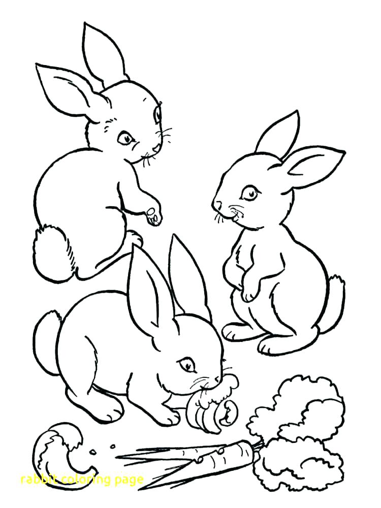 750x1000 Coloring Pages Of Coloring Pages Rabbit Free Printable Coloring