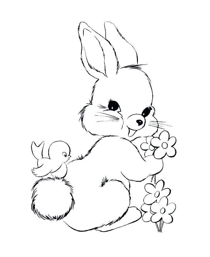 670x820 Coloring Page Bunny Rabbit