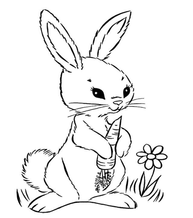 640x724 Bunny Holding A Carrot Coloring Page Kids Coloring Pages