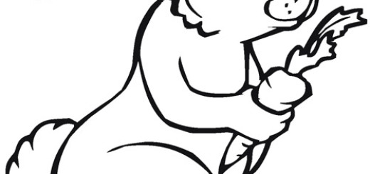 520x245 Animal Coloring Coloring Pages Wallpaper