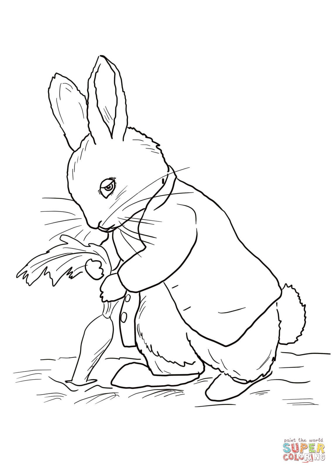 1135x1600 Magic Rabbit Coloring Pages Fresh Peter Rabbit Stealing Carrots
