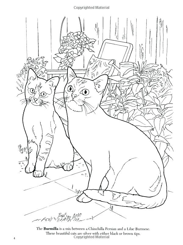 600x800 Burmese Animal Coloring Pages Animal Coloring Pages Adult Books