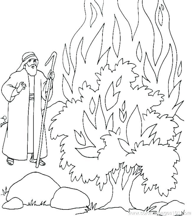 650x728 Moses And The Burning Bush Coloring Page Burning Bush Coloring