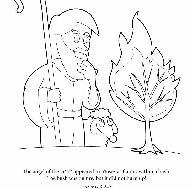612x600 Moses And Burning Bush Coloring Page Photos Moses