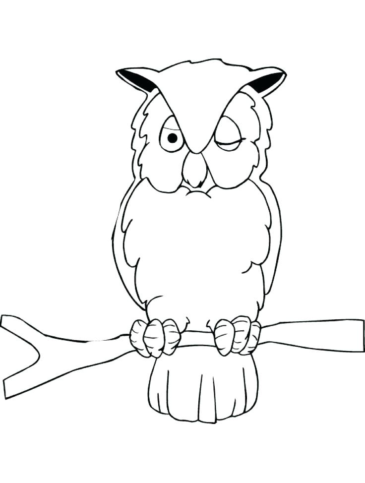736x974 Cute Owl Coloring Pages For Adults Baby Page To Print Color