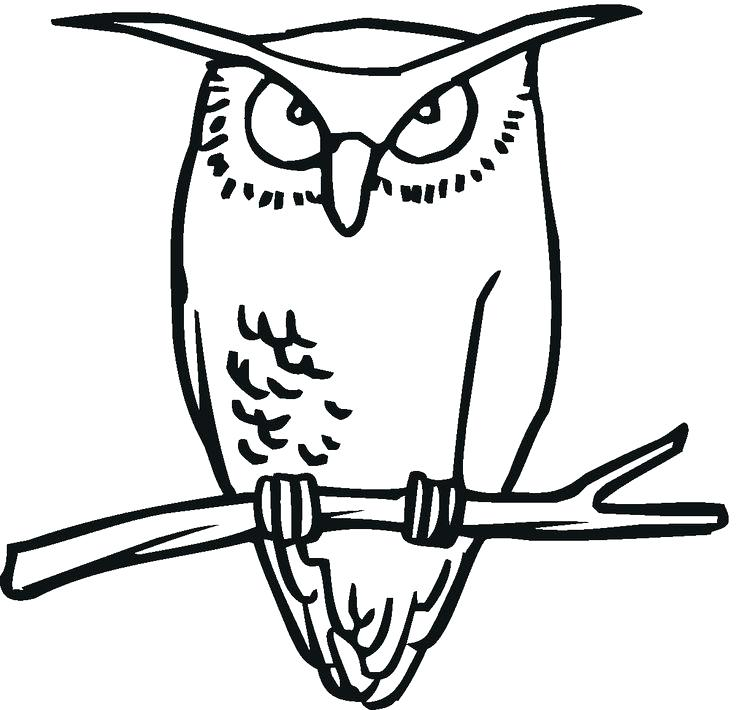 736x710 Great Horned Owl Coloring Page Burrowing Owl Great Horned Owl