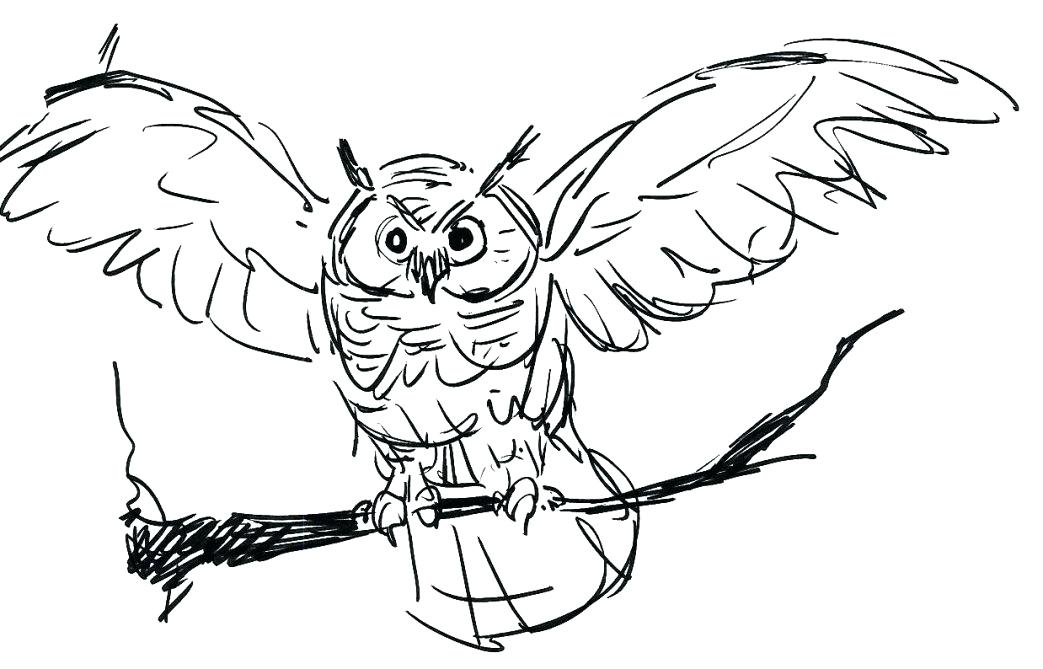 1043x669 Great Horned Owl Coloring Page Free Printable Owls Burrowing Owl