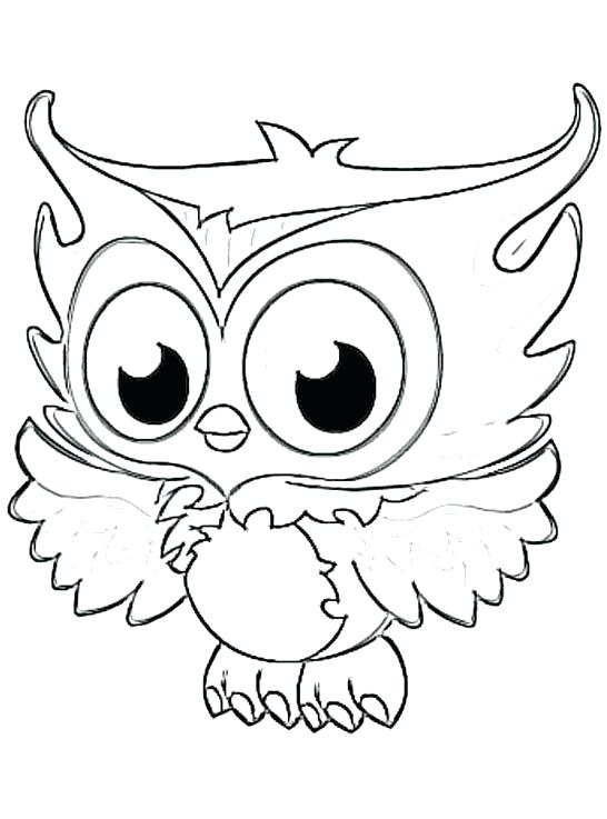 546x737 Make A Family Tree Or Owls To Print Out Cut Out Color And Glue