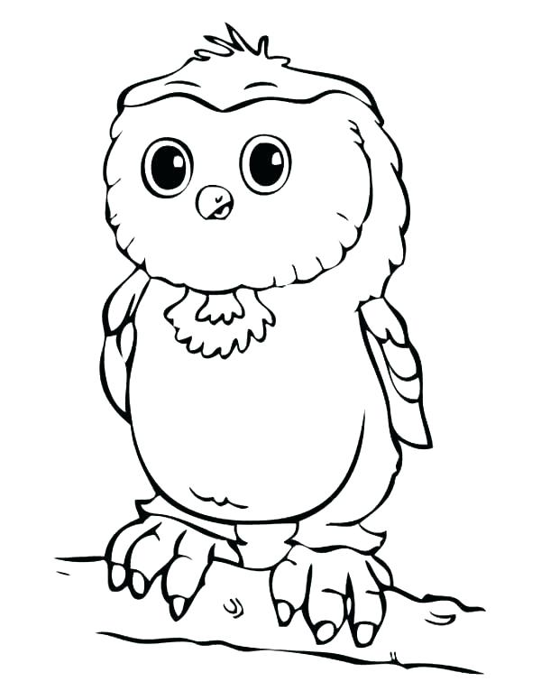 600x776 Owl Coloring Sheets Printable Coloring Pages Coloring Book Owl
