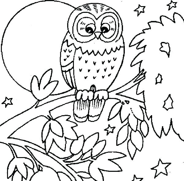 600x591 Owls Coloring Pages Burrowing Owl Coloring Page Owls Coloring