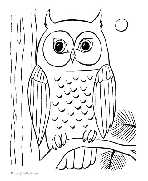474x580 Burrowing Owl Coloring Page Coloring Page Love Owl Colouring Pages