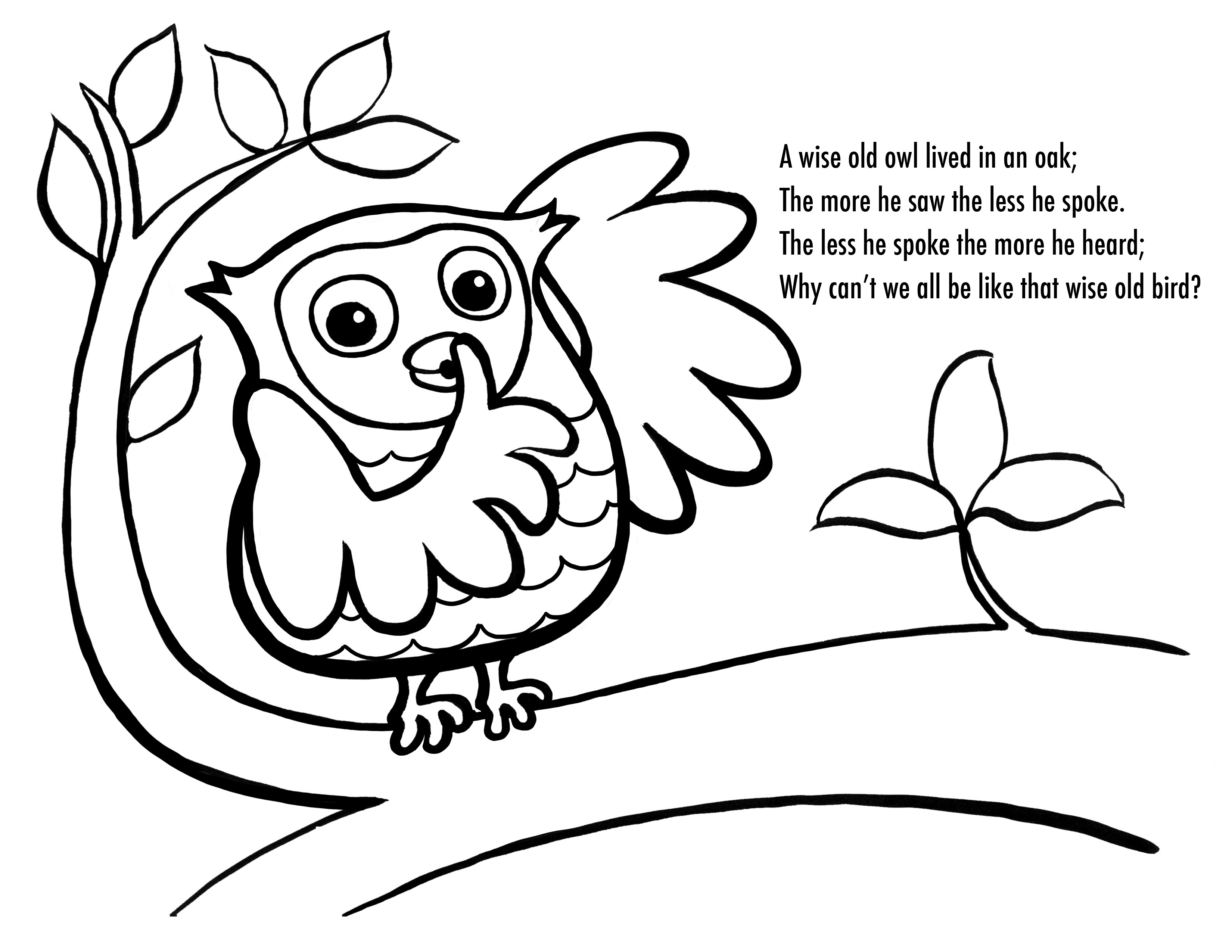 3300x2550 Coloring Pages Owls