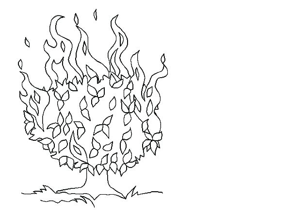 600x445 Moses And The Burning Bush Coloring Page
