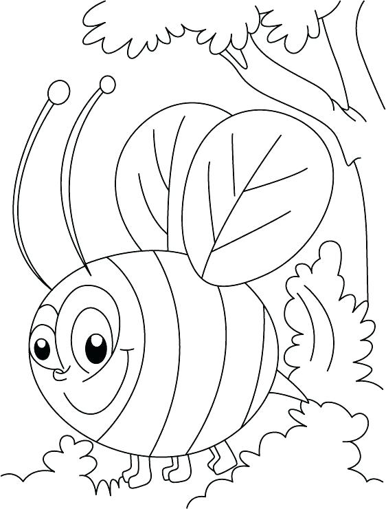 562x740 Honey Beehive Coloring Page Bee Busy In Squeeze Pages Transformers