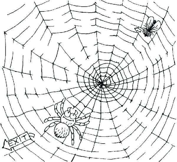 600x552 Spider Web Coloring Pages The Very Busy Spider Coloring Pages Fly