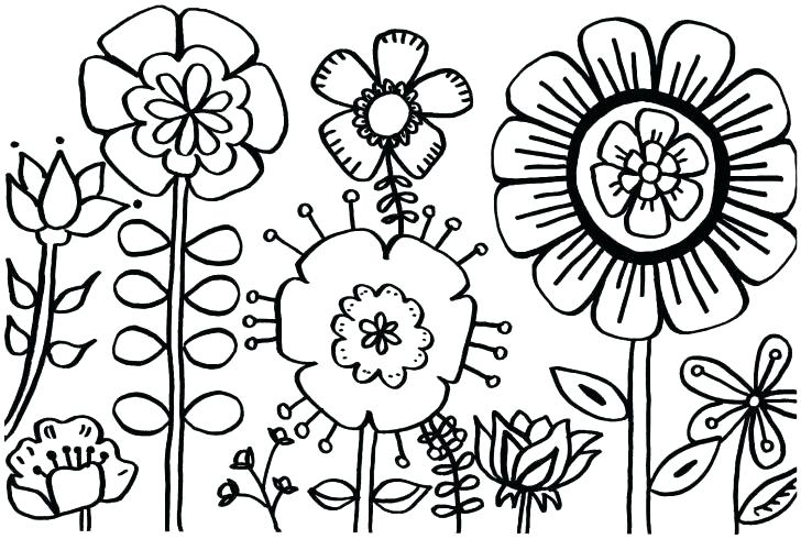 728x490 Coloring Pages For Spring Flowers Buttercup Flower Coloring Pages