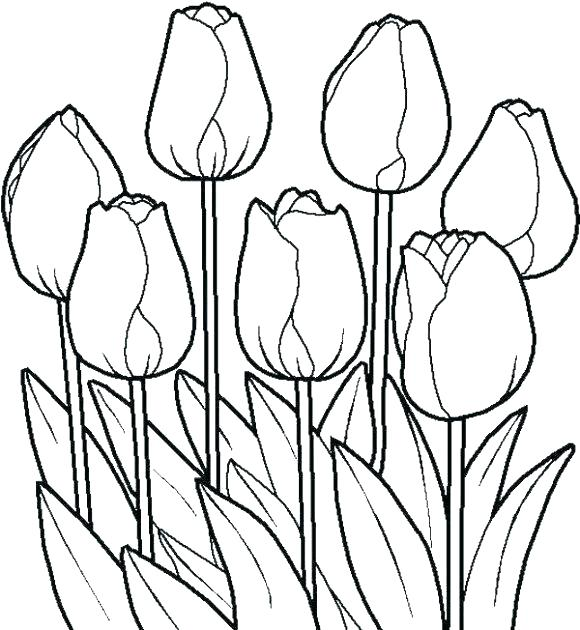 580x630 Flower Coloring Pages Pdf Together With Inspirational Free Flower