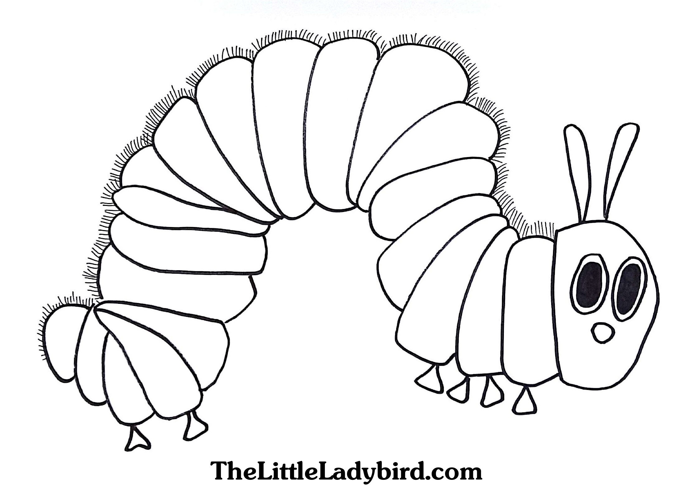 Butterfly Cocoon Coloring Pages at GetDrawings.com   Free ...