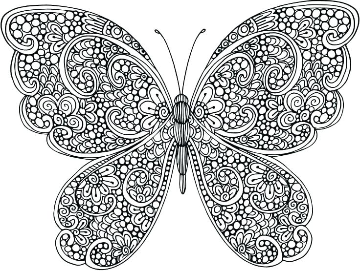 736x555 Coloring Page Of Butterfly Free Coloring Pages Flowers