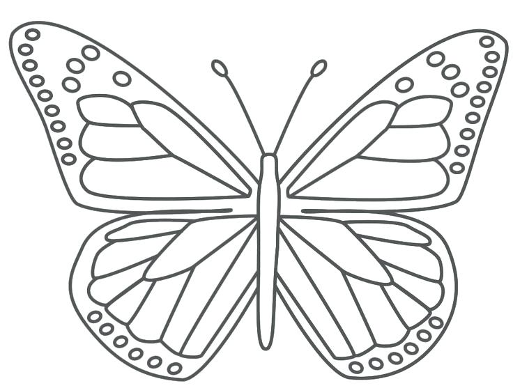736x557 Coloring Pages Butterfly Pictures Printable Butterfly Coloring