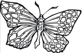 290x186 Printable Butterfly Coloring Page